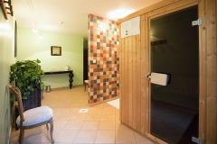 salle-de-sauna